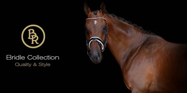 A bit about bridles & nosebands